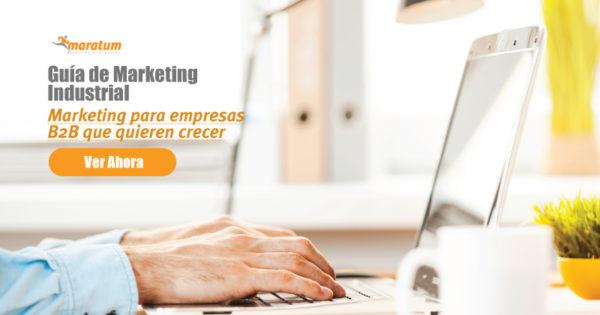 Botón: Ver guía de Marketing Industrial B2B